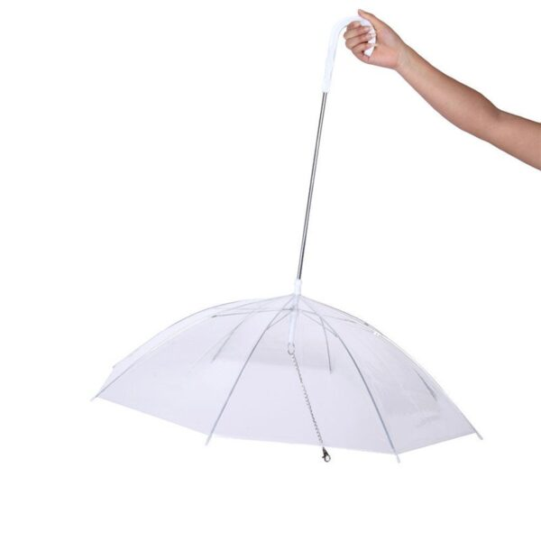 dog leash umbrella