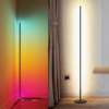 Nordic minimalist Floor lamp colorful rgb and white light