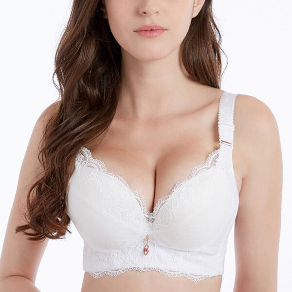 Celine Ultimate Lift Stretch Full-Figure Seamless Lace Support Bra