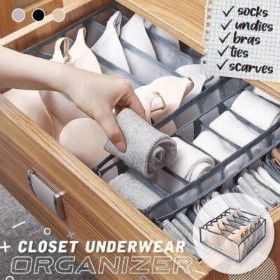 Closet Underwear Organizer