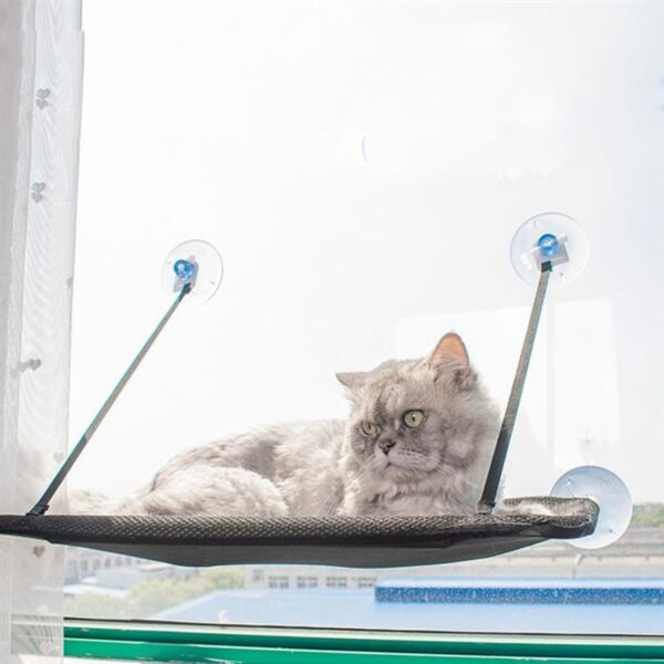 Cat Window Perch Hammock