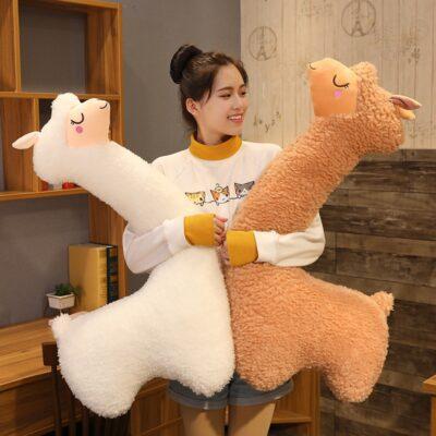 Shelby the Llama