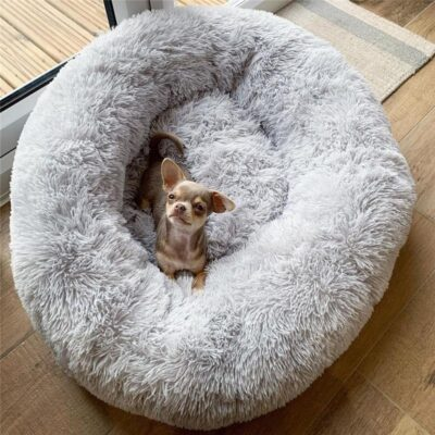Comfy Dog & Cat Bed
