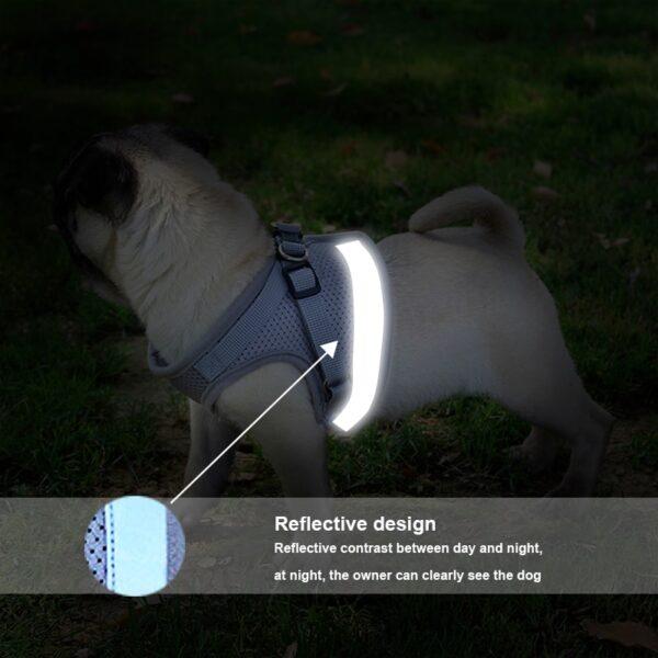 Travelers Reflective Harness