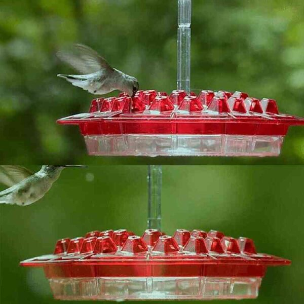 Mary's Sweety Hummingbird Feeder